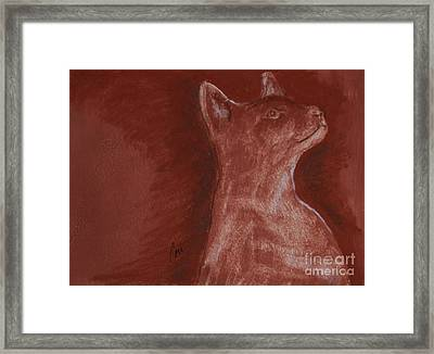 Hardly There Framed Print by Cori Solomon