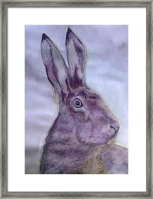 Hare Framed Print by Natalie Holden