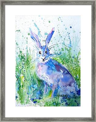 Hare Stare Framed Print by Trudi Doyle
