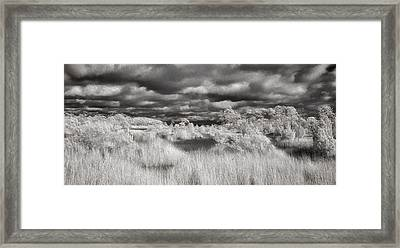 Harkers Island Savannah  Framed Print