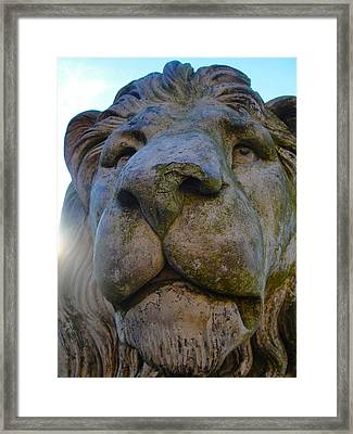 Harlaxton Lions Framed Print