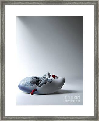 Harlequin Framed Print by Diane Diederich