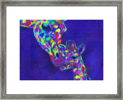 Harlequin Giraffes Framed Print