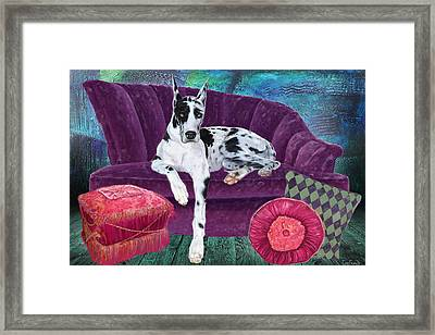 Harlequin Haven Framed Print