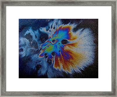 Harlequin Mask Expanded Framed Print by Samuel Sheats