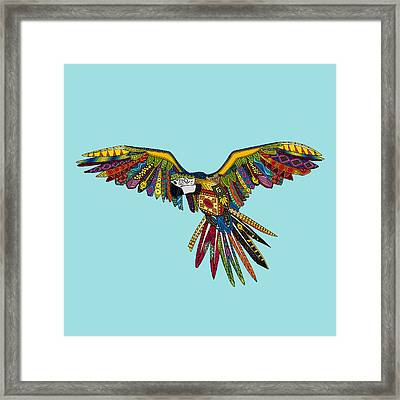 Harlequin Parrot Framed Print by Sharon Turner