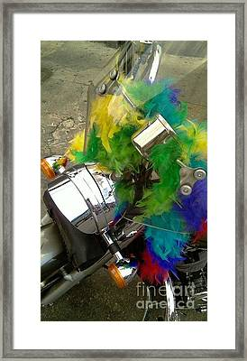 Harley A Diva Framed Print by Michael Hoard