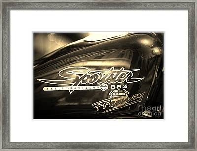 Harley Davidson Sportster 883 Framed Print by Stefano Senise