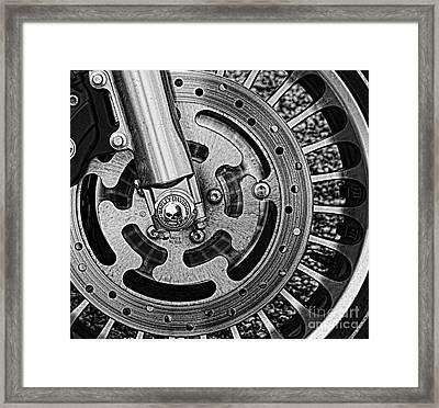 Harley Framed Print by Elena Nosyreva