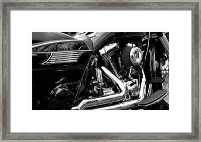 Harley Framed Print by Michelle Calkins