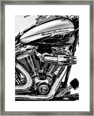 Harley Monochrome Framed Print by Tim Gainey