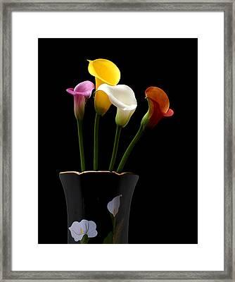 Harmony Framed Print