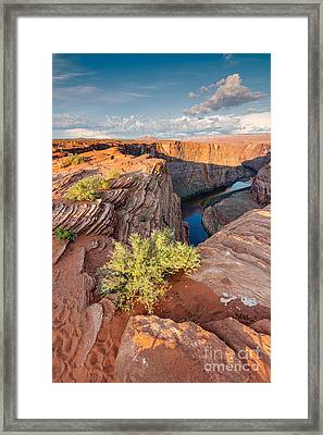 Harmony Of Elements Framed Print
