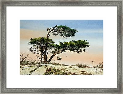 Harmony Of Nature Framed Print by James Williamson