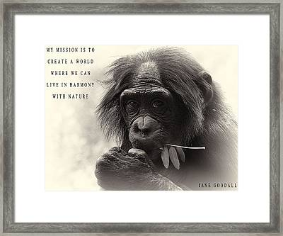 Harmony With Nature Framed Print by Dan Sproul