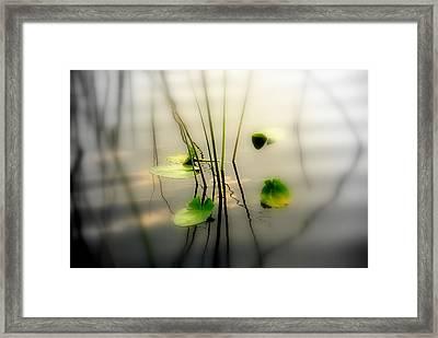 Harmony Zen Photography II Framed Print