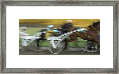 Harness Racing 6 Framed Print by Bob Christopher