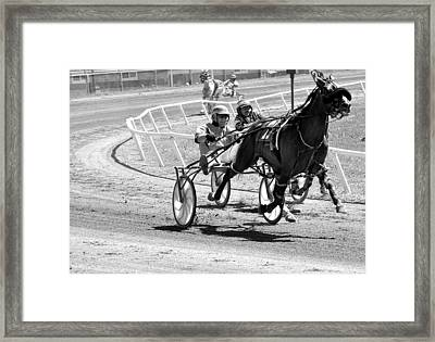 Harness Racing Framed Print by Todd Hostetter