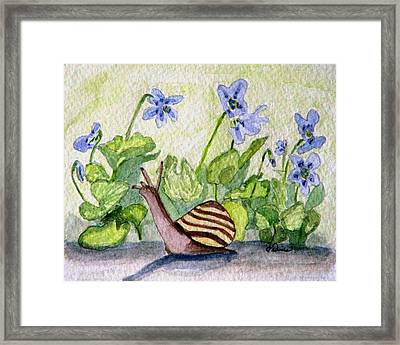 Harold In The Violets Framed Print by Angela Davies