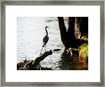 Haron Ventures On Framed Print by Adam LeCroy