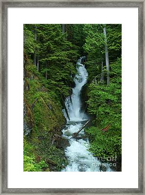 Framed Print featuring the photograph Harrison Lake Road Falls by Rod Wiens