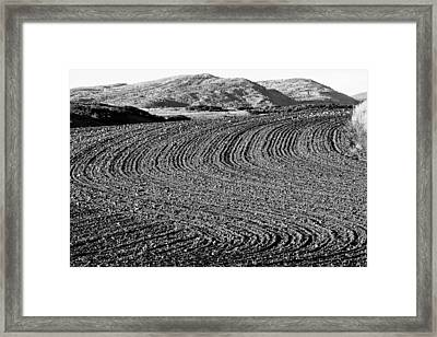 Harrowed Field Framed Print