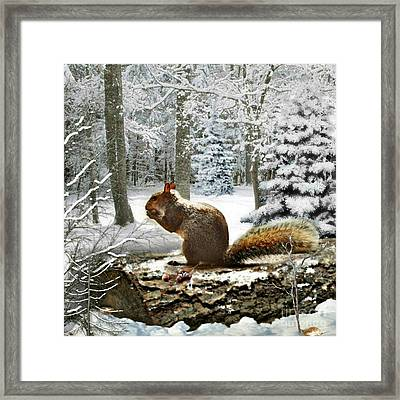 Harry In Winter 2 Framed Print