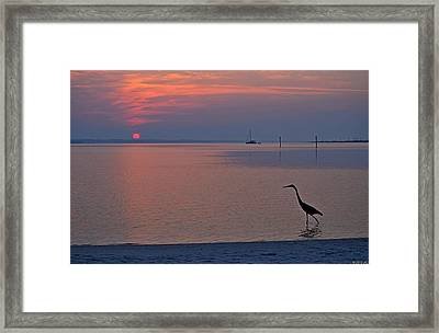 Harry The Heron Fishing On Santa Rosa Sound At Sunrise Framed Print by Jeff at JSJ Photography