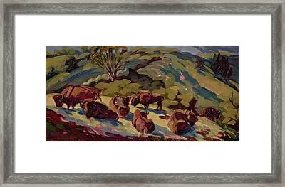 Hart Ranch Buffalo Framed Print by Jane Thorpe