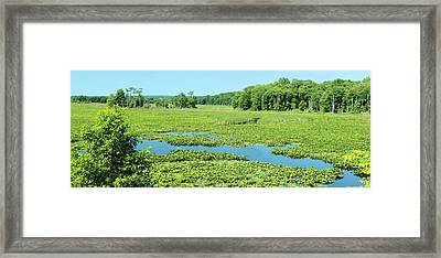 Hartstown Marsh Panorama Framed Print