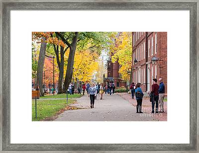 Harvard Campus In Fall Framed Print by Jannis Werner