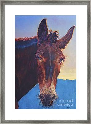 Harvard Framed Print by Patricia A Griffin