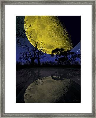 Harvest 3 Framed Print by David Cowan
