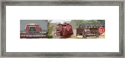 Harvest 4 Framed Print by Carol Lynch