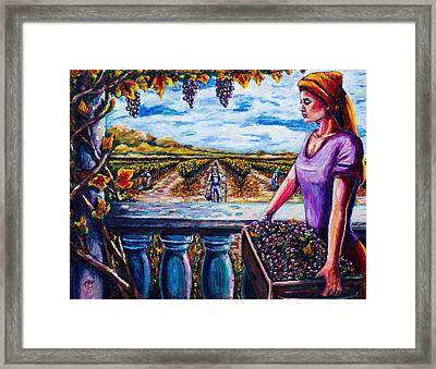 Harvest And The Vineyard's Daughter  Framed Print by Kevin Richard