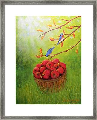 Harvest Apples And Bluebirds Framed Print