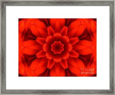 Harvest Bloom Framed Print