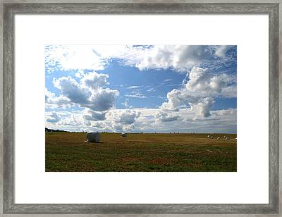 Framed Print featuring the photograph Harvest Blue  by Neal Eslinger