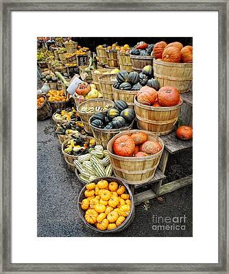 Harvest Framed Print by Claudia Kuhn