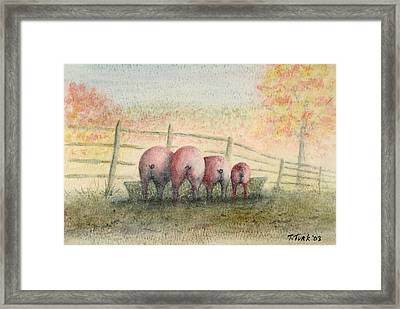 Harvest Feast Framed Print by Tim Turk