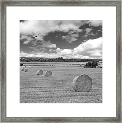 Harvest Fly Past Black And White Square Framed Print by Gill Billington