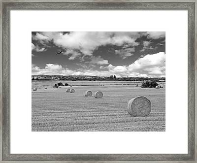 Harvest Fly Past In Black And White Framed Print by Gill Billington