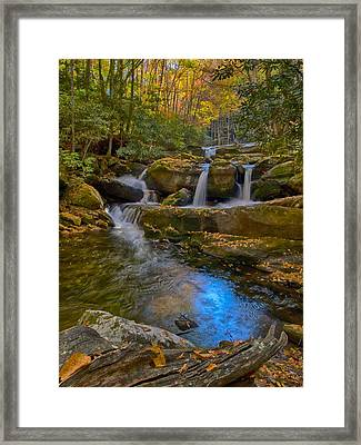 Harvest Golds Framed Print