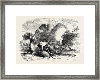 Harvest In France Stacking Hay Framed Print