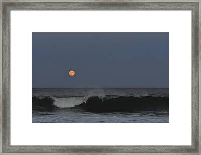 Harvest Moon Seaside Park Nj Framed Print by Terry DeLuco