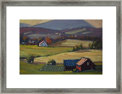 Harvest Patterns Framed Print