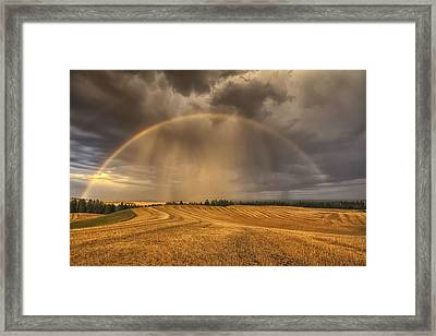 Harvest Rainbow Framed Print by Mark Kiver