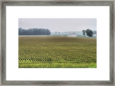 Harvest Season Framed Print by Dan Sproul