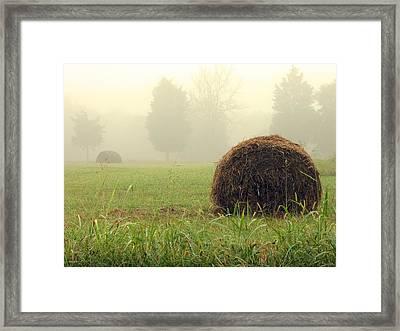 Harvest Framed Print by Steve Godleski
