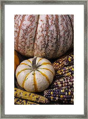Harvest Still Life Framed Print by Garry Gay